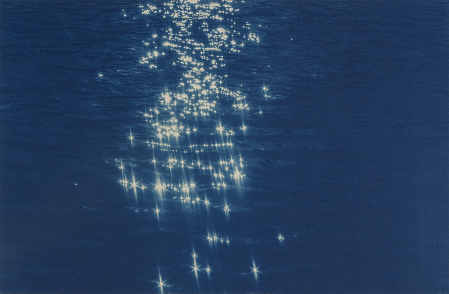 Cyanotype by Jaclyn Kain