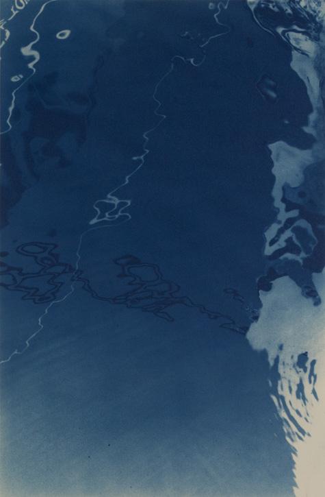 Cyanotype by Jaclyn Kain