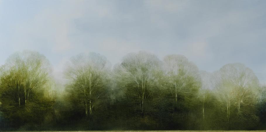 Paintings by Peter Brooke